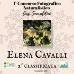 Diploma 1° Concorso Fotografico Naturalistico Oasi Smeraldino Milano